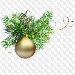 Christmas png images fir.