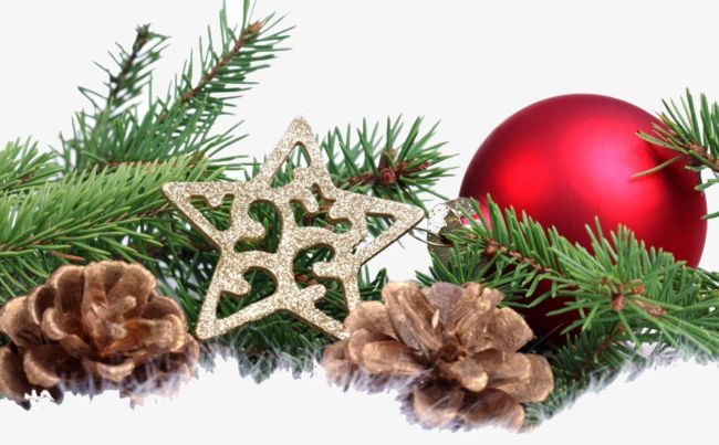 Christmas Tree Branches PNG, Clipart, Ball, Branches Clipart.