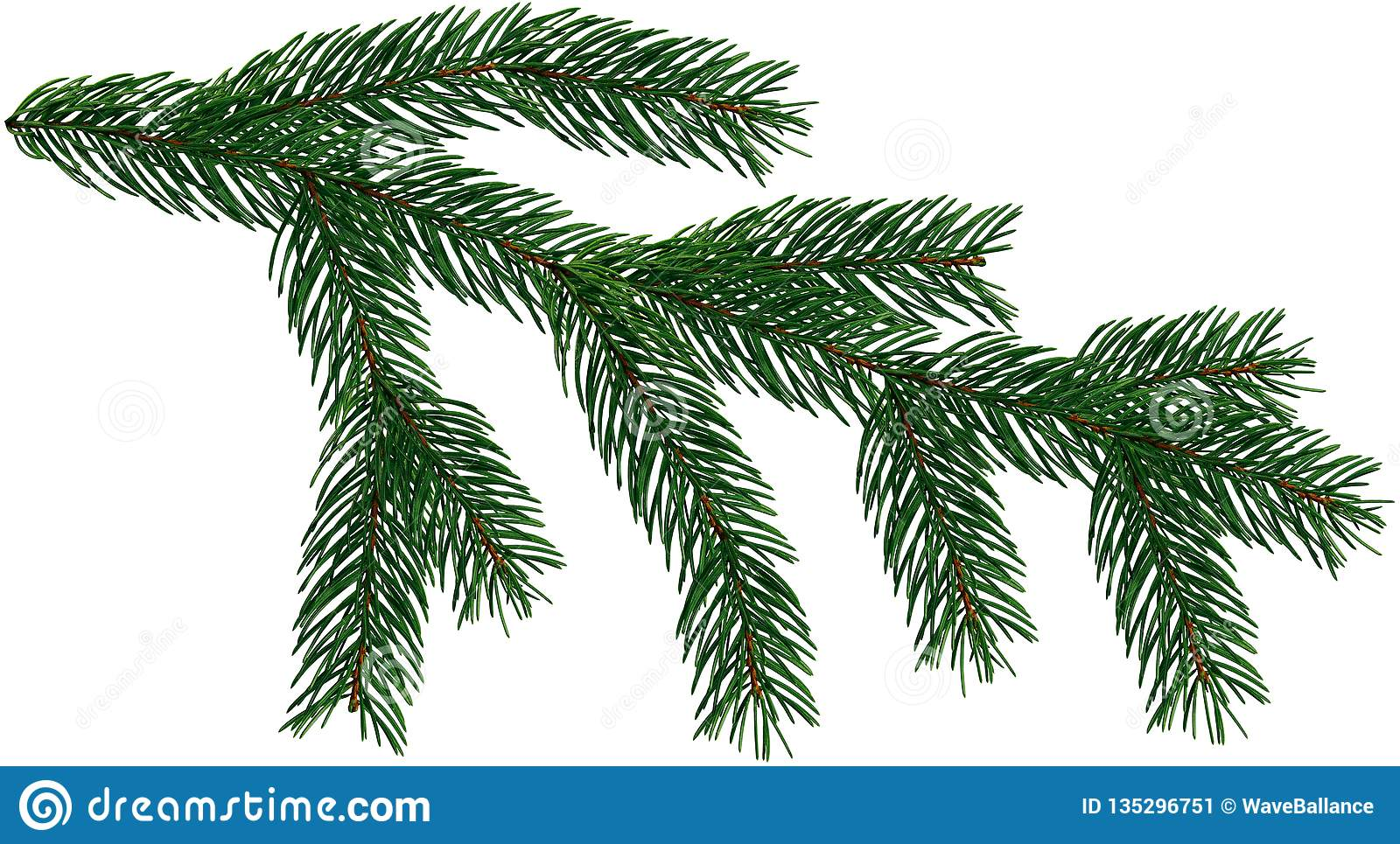 Large Fir Tree Branch Christmas Tree Is Isolated On A White And.