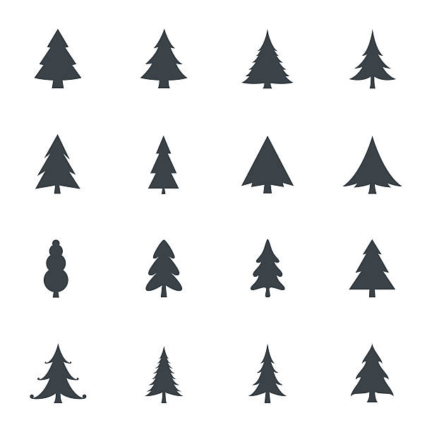 Best Christmas Tree Illustrations, Royalty.
