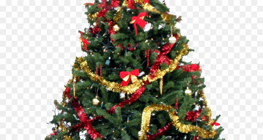 25 December Christmas Day png download.