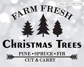 Fresh cut tree.