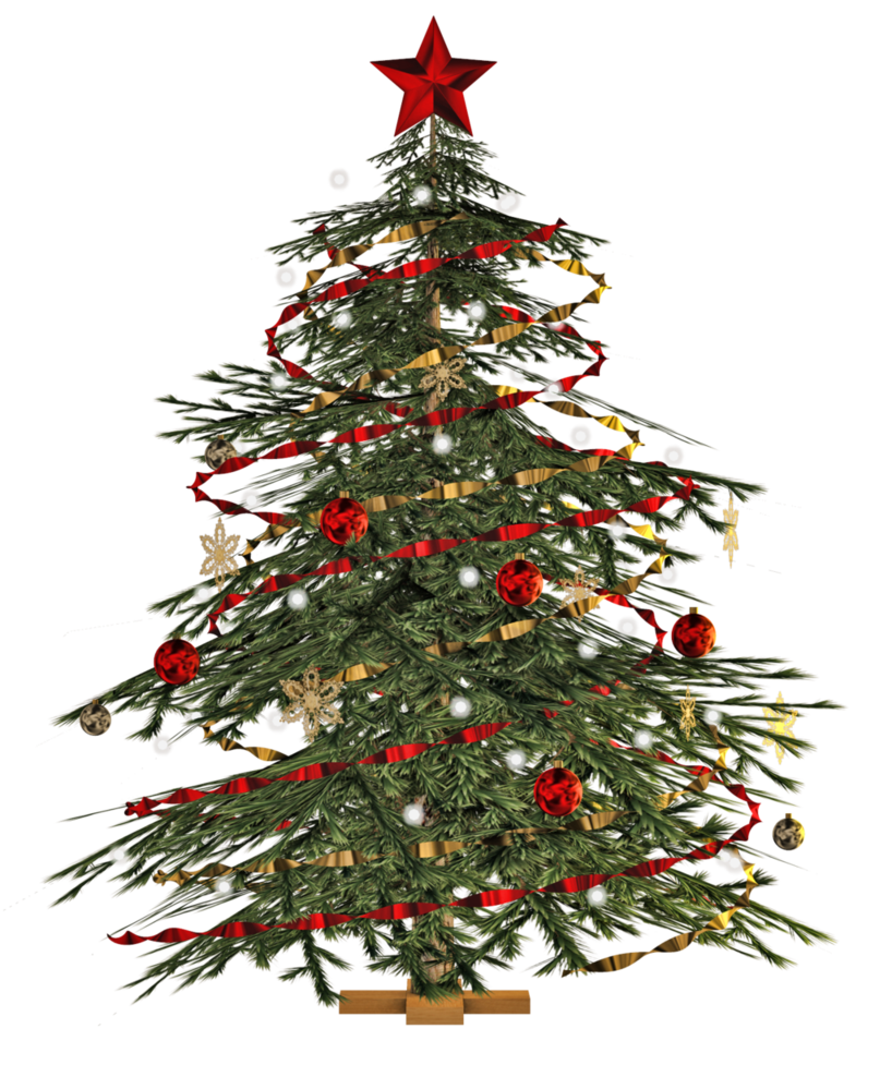 Christmas Tree PNG Transparent Images.
