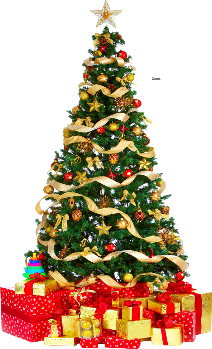 Download Christmas Tree PNG Free Download.