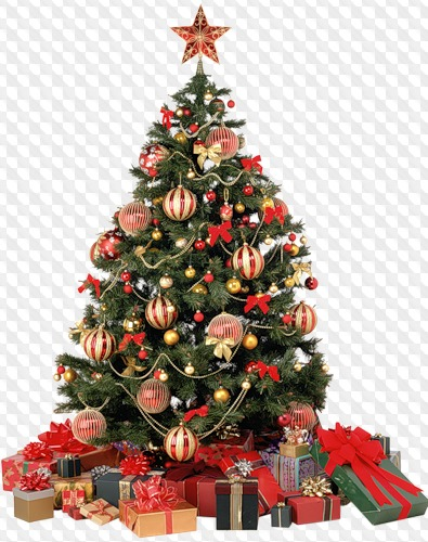 Free Christmas trees png images on a transparent background download.
