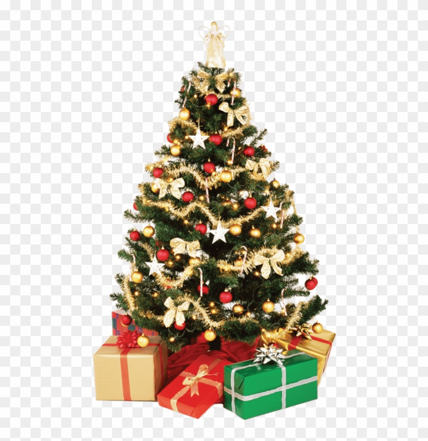 Free Png Download Small Christmas Tree Png Images Background.