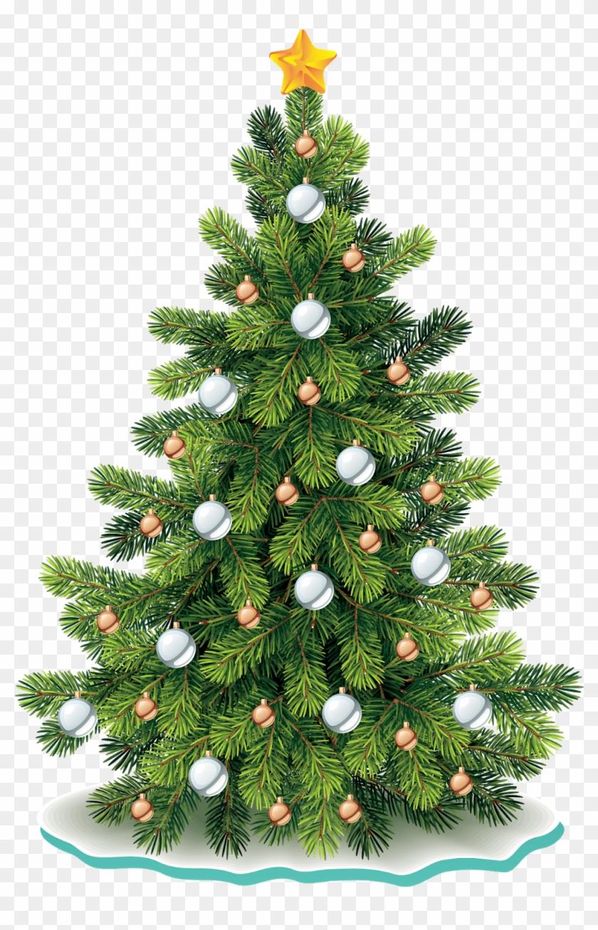 Christmas Tree Png Vector.