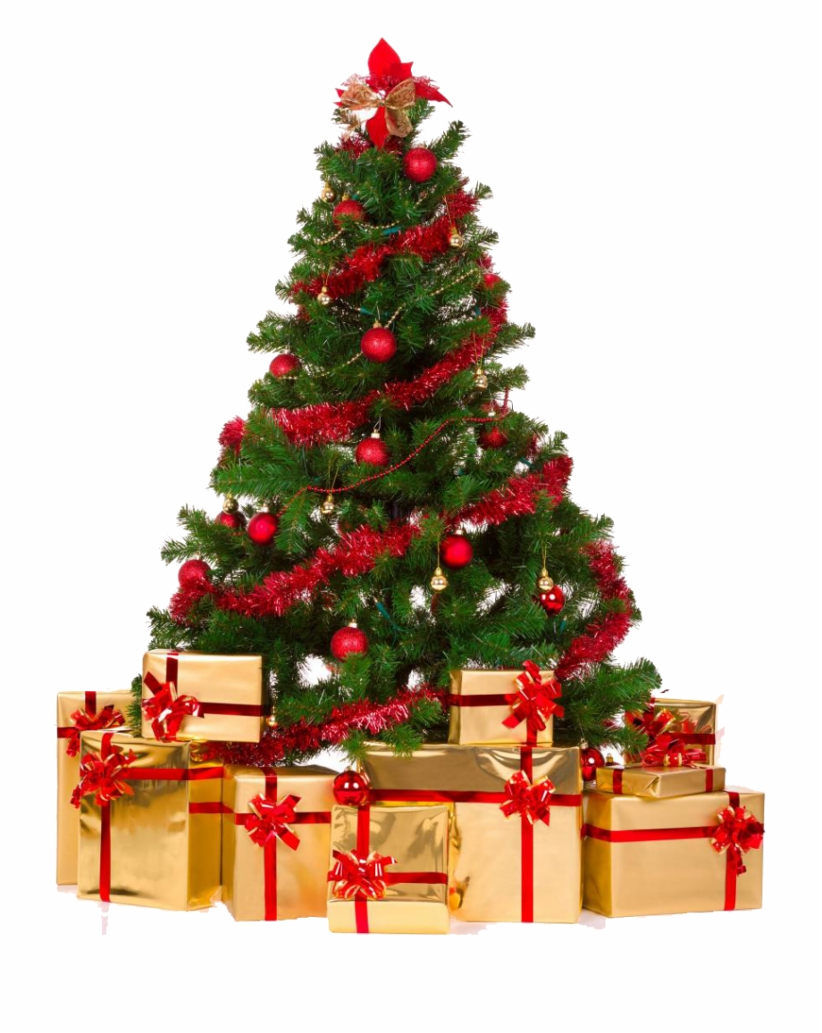 Christmas Tree Png Transparent Free PNG Images & Clipart Download.