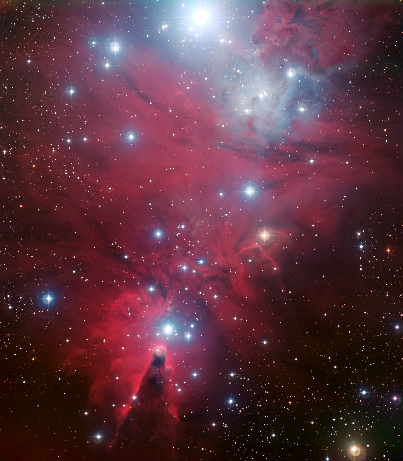 NGC 2264 and the Christmas Tree cluster*.
