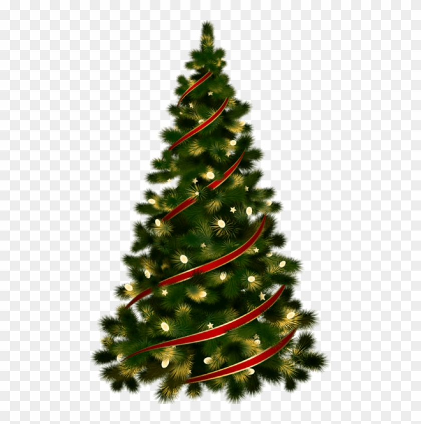 Free Png Large Transparent Christmas Tree With Red.