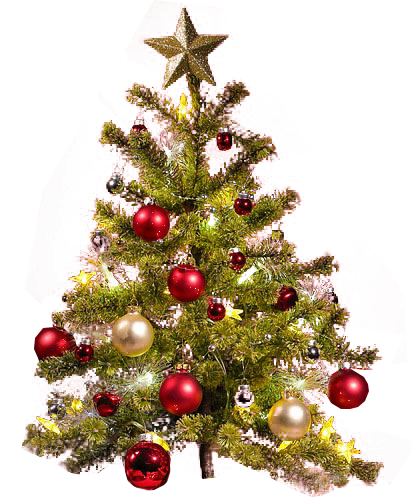 Small Christmas Tree transparent background PNG Image.