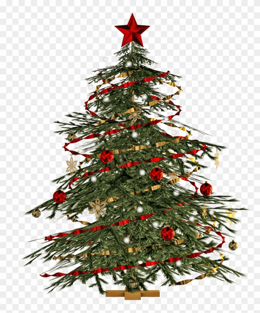 Transparent Christmas Tree Png, Png Download.