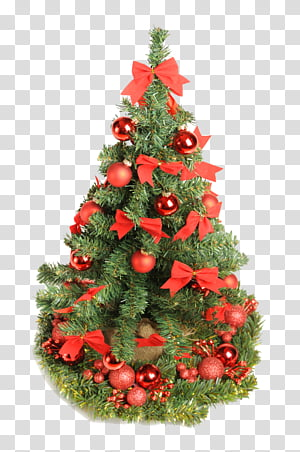 Christmas Resource , green christmas tree transparent background PNG.