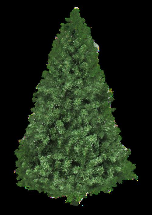 Christmas Tree PNG Transparent Image.