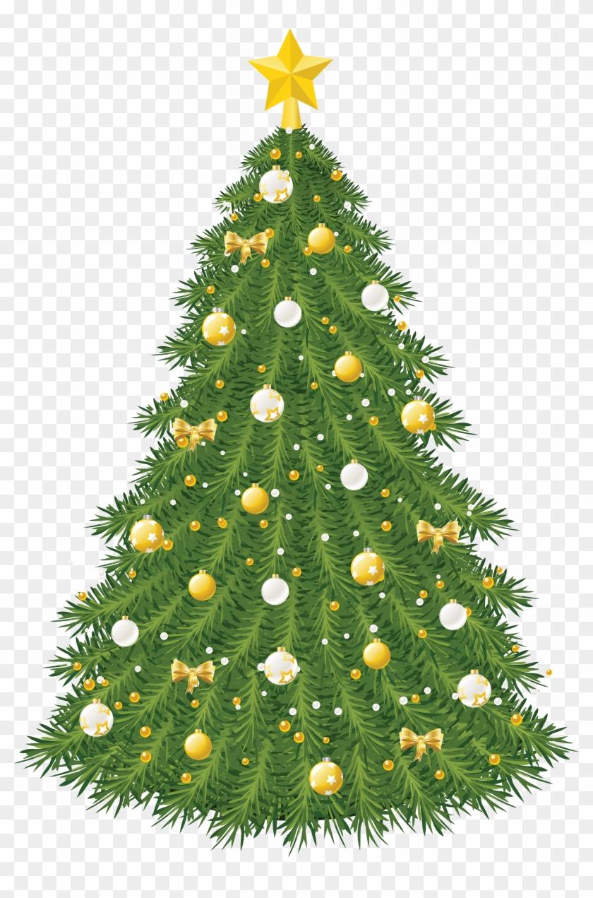 Real Christmas Tree, Vector Christmas, Leh, Clip Art,.