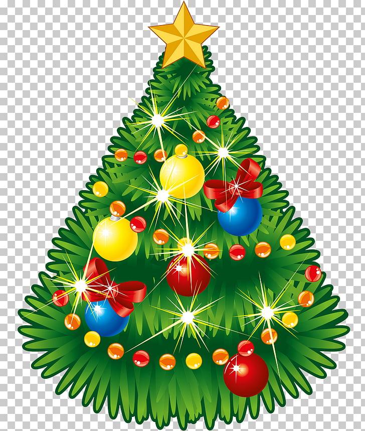 Christmas tree Star of Bethlehem Tree.