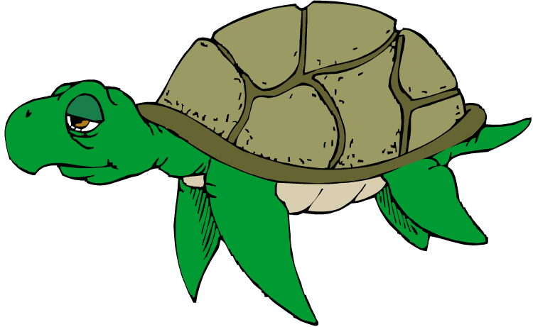 Christmas sea turtle clipart.