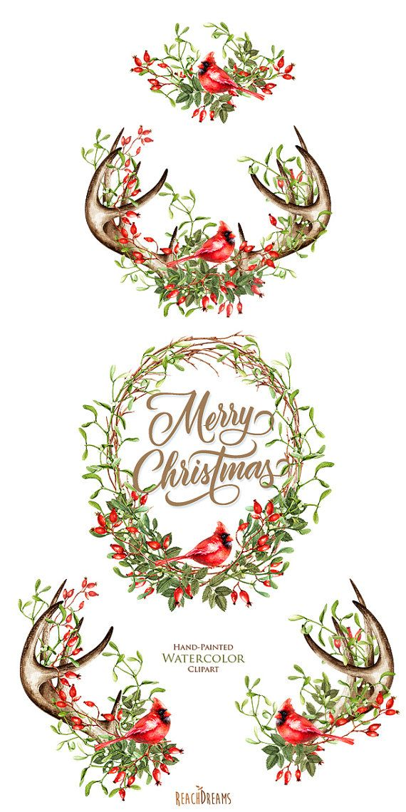 Watercolor Christmas Clipart, Mistletoe, Briar, Red Cardinal.