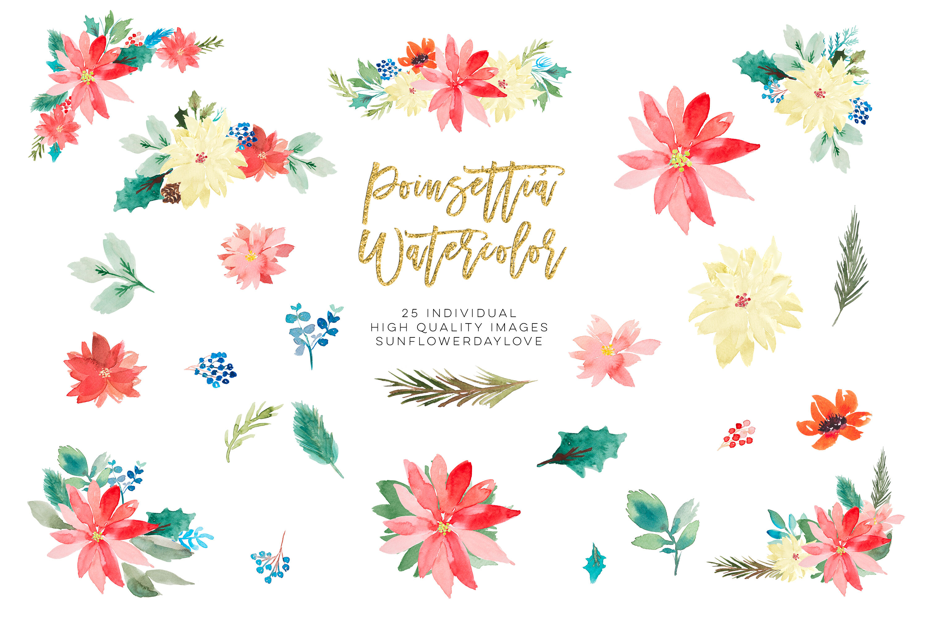 Poinsettia clipart, Christmas Wedding Invitation clipart By.