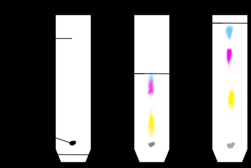 Clip art chromatography.