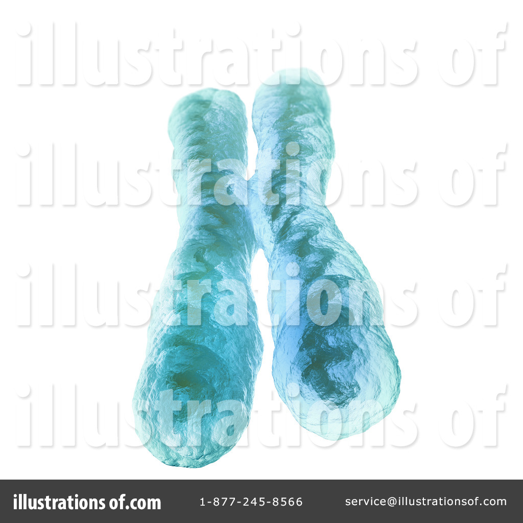 Chromosome Clipart #1247363.