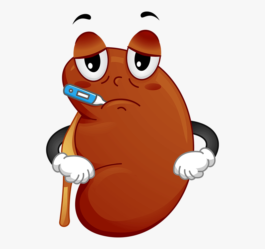 Kidney Failure Clipart.