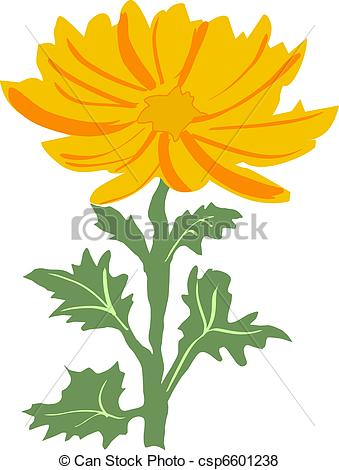 Vector Clip Art of chrysanthemum.