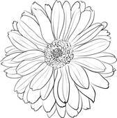 Chrysanthemum clipart black and white 5 » Clipart Portal.