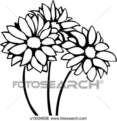 Chrysanthemum clipart black and white 7 » Clipart Portal.