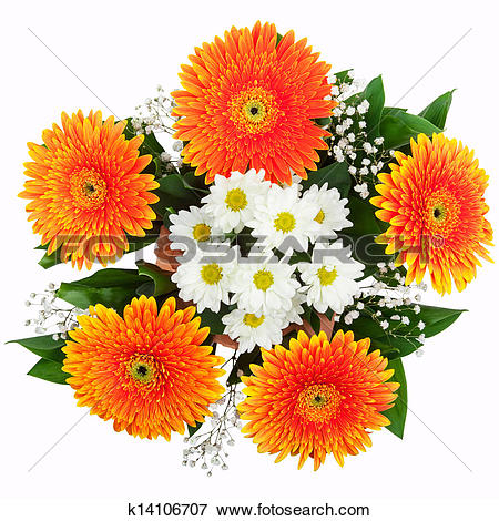 Picture of Bouquet of chrysanthemums and gerberas k14106707.