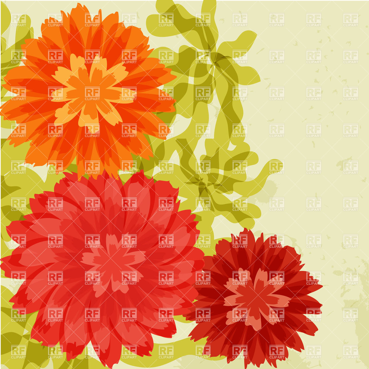 clip art chrysanthemum flowers.