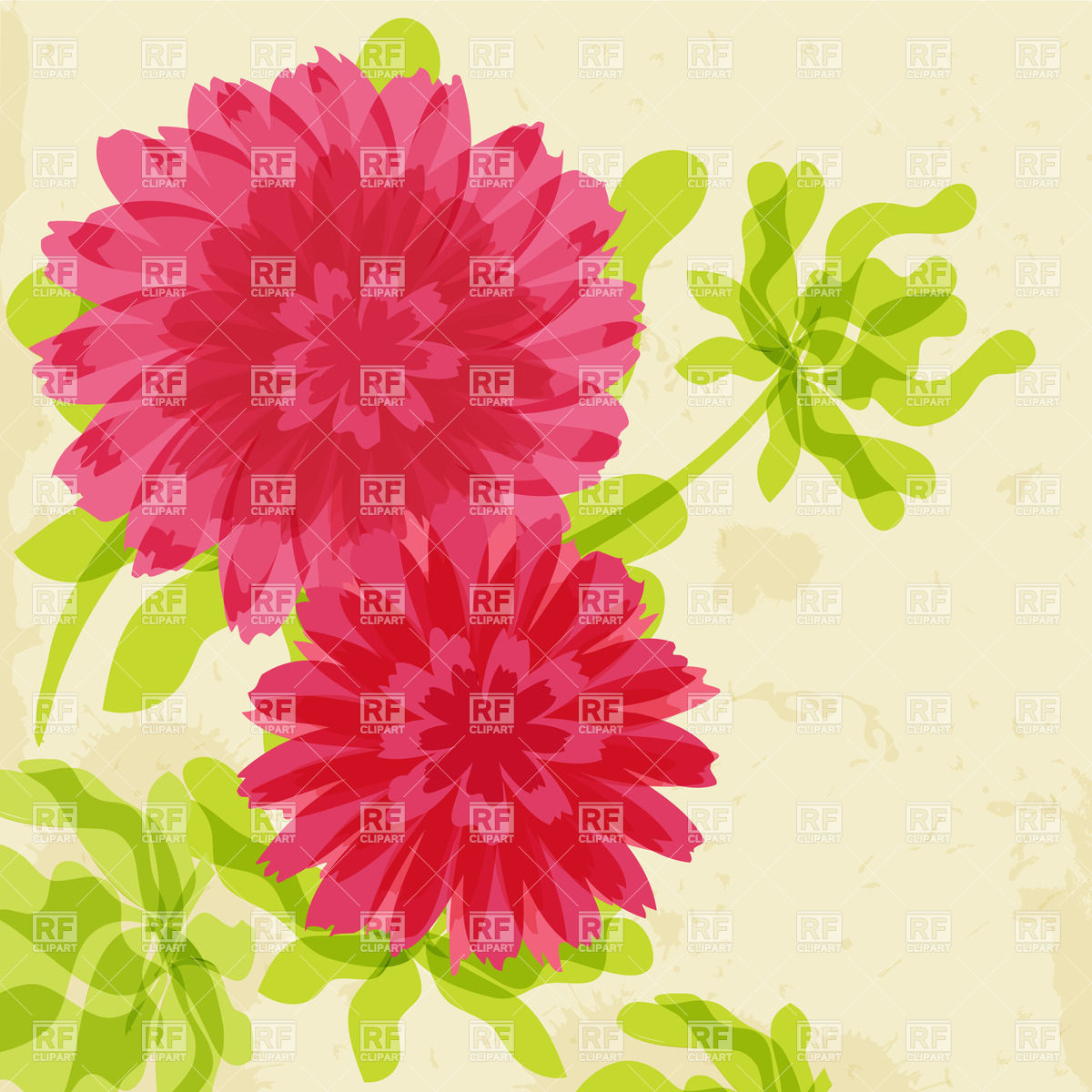 Three red chrysanthemums on floral background Vector Image #22642.