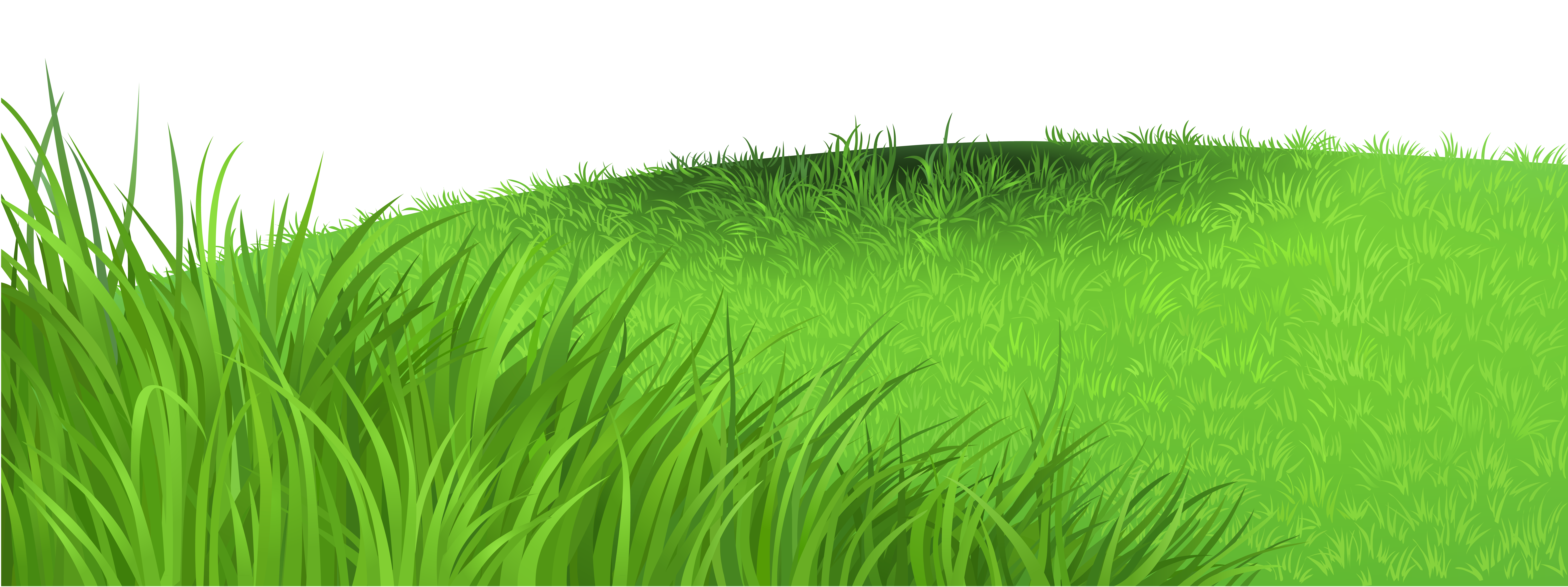 Grass Deco PNG Clipart Picture.