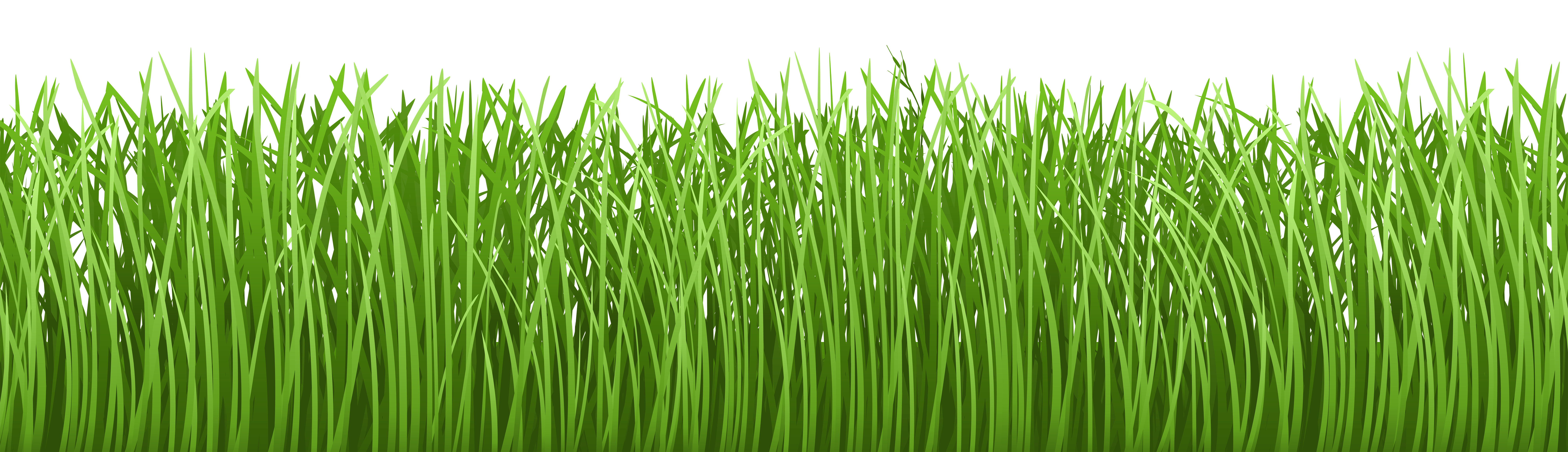 Grass Ground Cover Transparent PNG Clip Art Image.