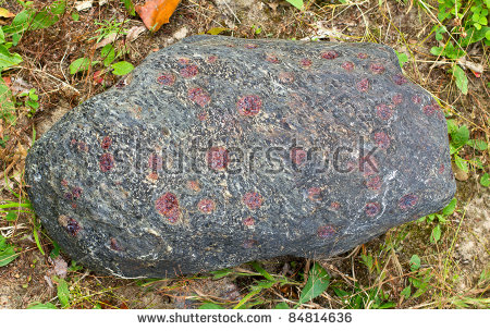 Garnet Crystals Embedded In A Large Gray Rock Stock Photo 84814636.