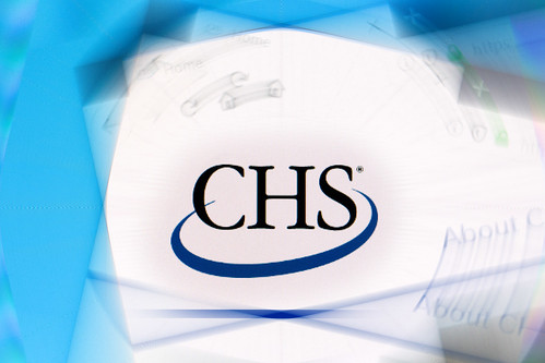 CHS logo on company website displayed on computer screen.