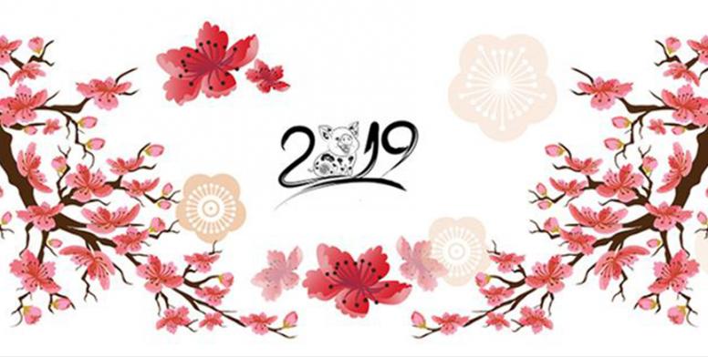 Chúc Mừng Năm Mới 2019.