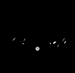 Search: converse chuck taylor Logo Vectors Free Download.