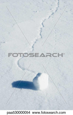 Stock Photo of Chunk of snow on top of snowy surface paa530000054.