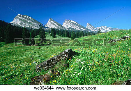 Stock Photo of Alps. Spring. View from Alp Sellamatt. Churfirsten.