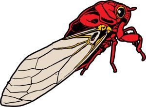 Cicada Clip Art Download.