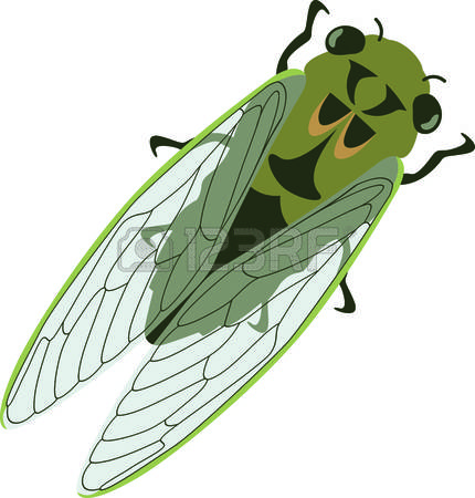 376 Cicada Stock Vector Illustration And Royalty Free Cicada Clipart.