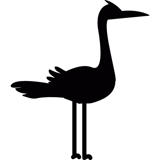 Migratory, Ciconiidae, bird, Animals icon.