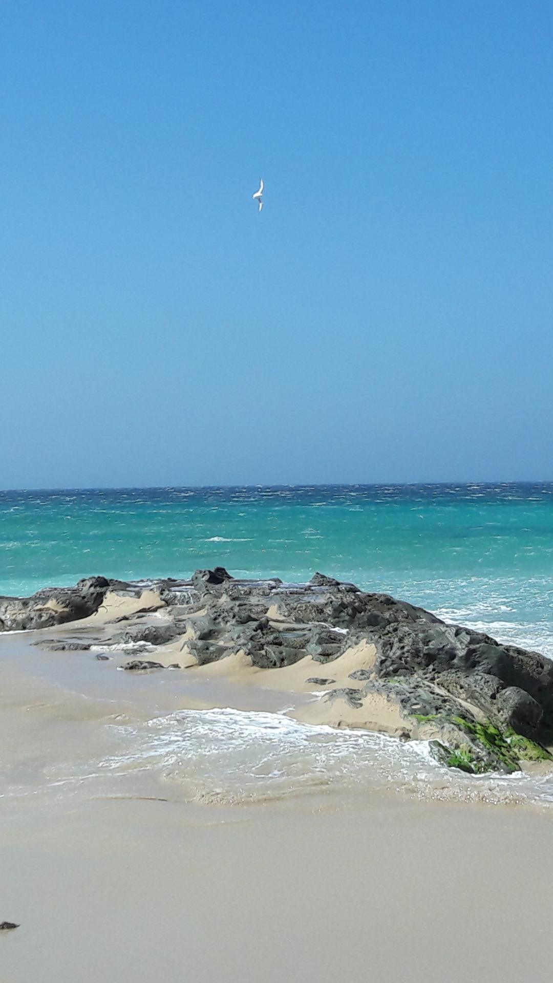 File:Cielo mar y tierra.png.