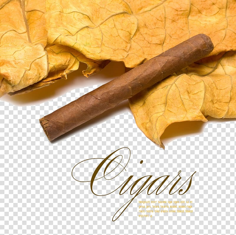 Tobacco and cigar clip buckle Free HD transparent background PNG.