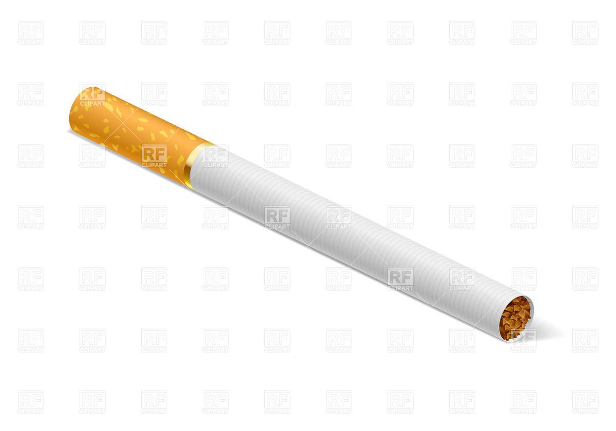 Realistic cigarette Stock Vector Image.