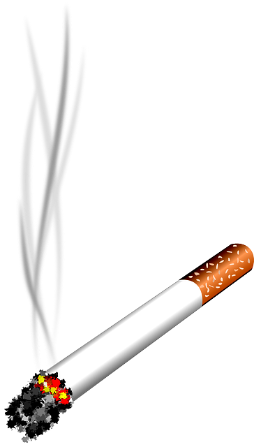 Cigarro png » PNG Image.
