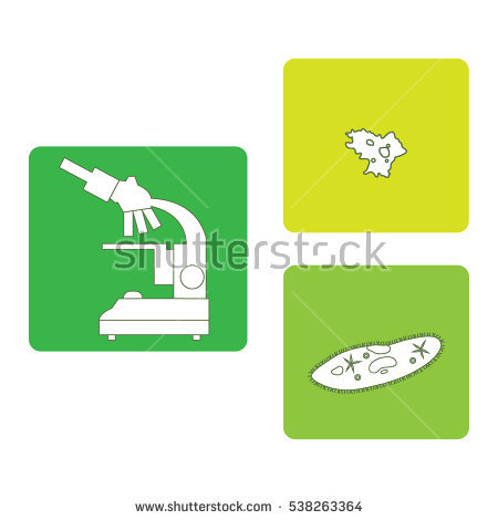 Ciliate Stock Images, Royalty.