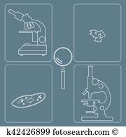Ciliate Clipart and Illustration. 27 ciliate clip art vector EPS.