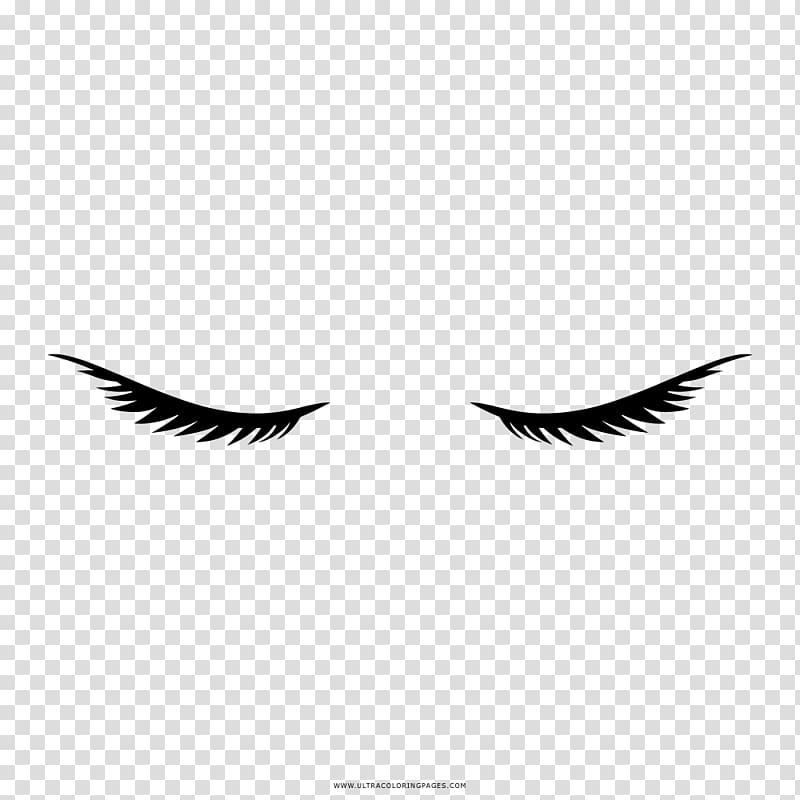 Cilios PNG clipart images free download.